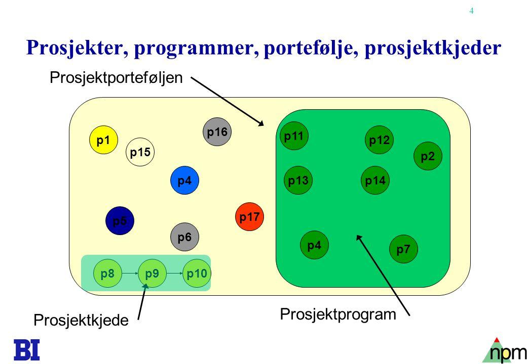 4 Prosjekter, programmer, portefølje, prosjektkjeder Prosjektprogram Prosjektporteføljen p4 p1 p16 p5 p6 p17 p11 p14 p2 p12 p15 p13 p4 p7 p9p8p10 Prosjektkjede