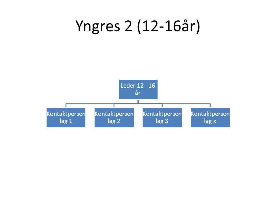 Yngres 2 (12-16år) Leder 12 - 16 år Kontaktperson lag 1 Kontaktperson lag 2 Kontaktperson lag 3 Kontaktperson lag x
