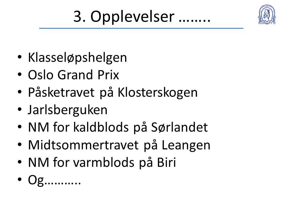 3. Opplevelser …….. • Klasseløpshelgen • Oslo Grand Prix • Påsketravet på Klosterskogen • Jarlsberguken • NM for kaldblods på Sørlandet • Midtsommertr