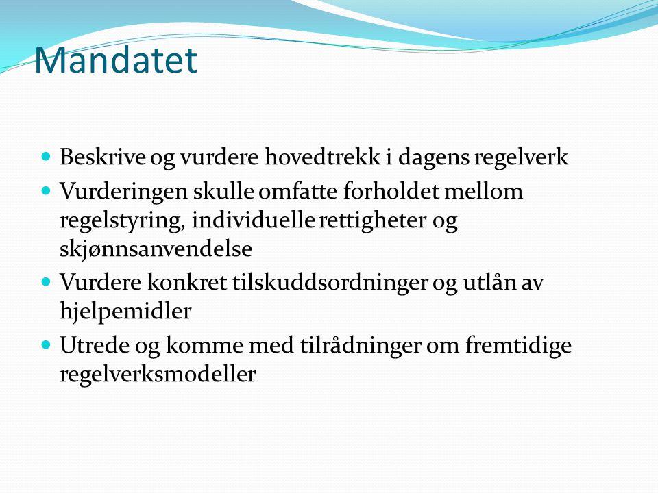Mandatet  Beskrive og vurdere hovedtrekk i dagens regelverk  Vurderingen skulle omfatte forholdet mellom regelstyring, individuelle rettigheter og s