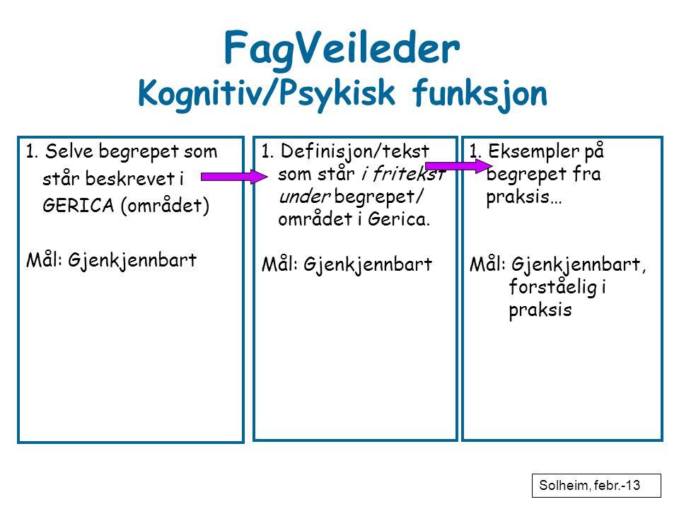 FagVeileder Kognitiv/Psykisk funksjon 1. Selve begrepet som står beskrevet i GERICA (området) Mål: Gjenkjennbart 1. Definisjon/tekst som står i fritek