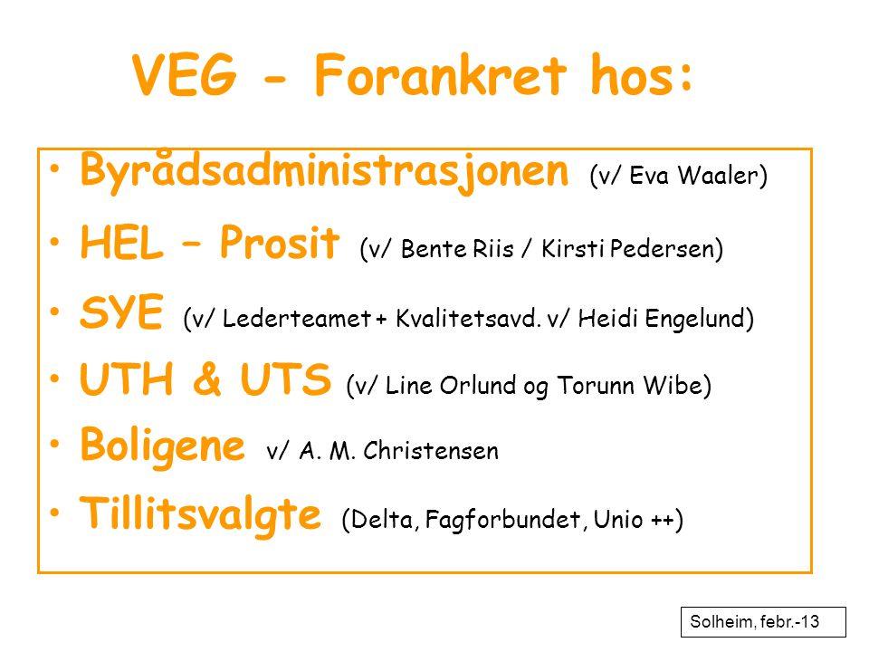 VEG - Forankret hos: •Byrådsadministrasjonen (v/ Eva Waaler) •HEL – Prosit (v/ Bente Riis / Kirsti Pedersen) •SYE (v/ Lederteamet + Kvalitetsavd. v/ H