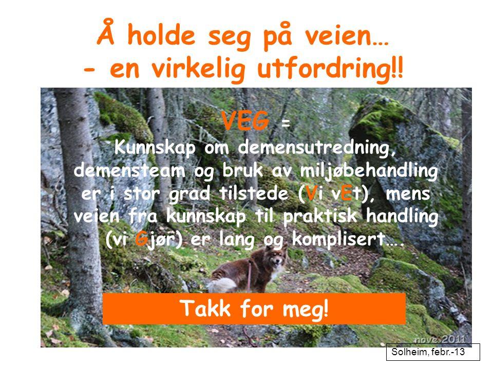 Å holde seg på veien… - en virkelig utfordring!! VEG = Kunnskap om demensutredning, demensteam og bruk av miljøbehandling er i stor grad tilstede (Vi