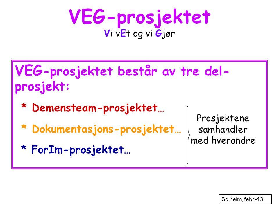 VEG-prosjektet Vi vEt og vi Gjør VEG -prosjektet består av tre del- prosjekt: * Demensteam-prosjektet… * Dokumentasjons-prosjektet… * ForIm-prosjektet