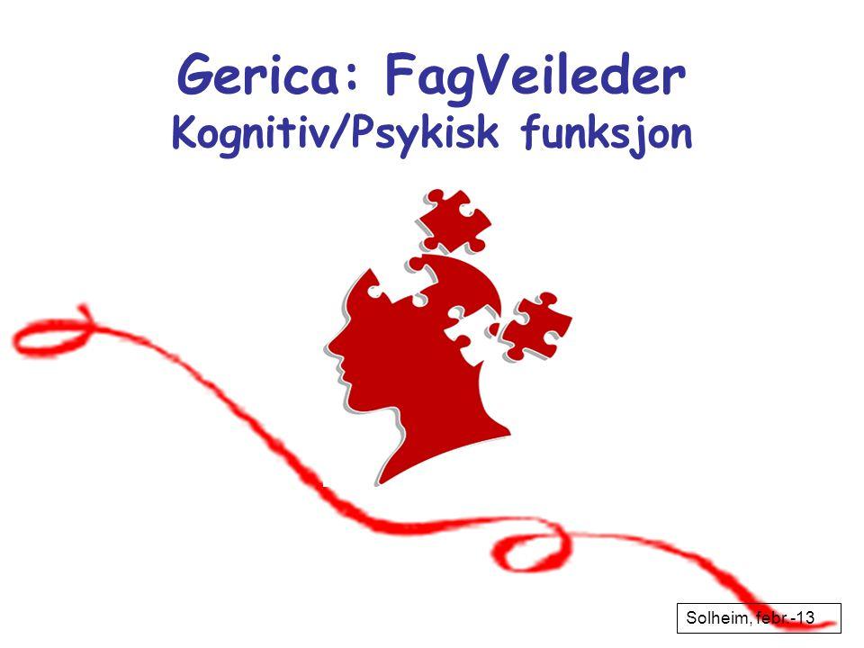 Solheim, nov-12 Gerica: FagVeileder Kognitiv/Psykisk funksjon Solheim, febr.-13