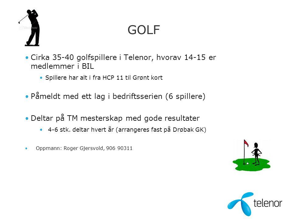 GOLF •Cirka 35-40 golfspillere i Telenor, hvorav 14-15 er medlemmer i BIL •Spillere har alt i fra HCP 11 til Grønt kort •Påmeldt med ett lag i bedrift