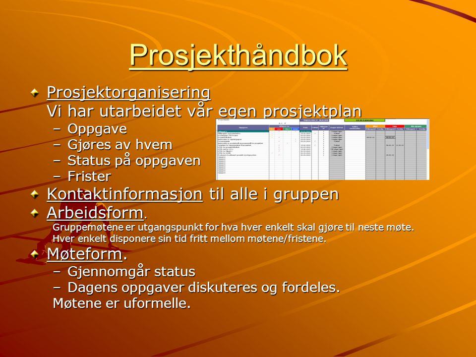 Prosjekthåndbok Prosjektorganisering Vi har utarbeidet vår egen prosjektplan –Oppgave –Gjøres av hvem –Status på oppgaven –Frister Kontaktinformasjon
