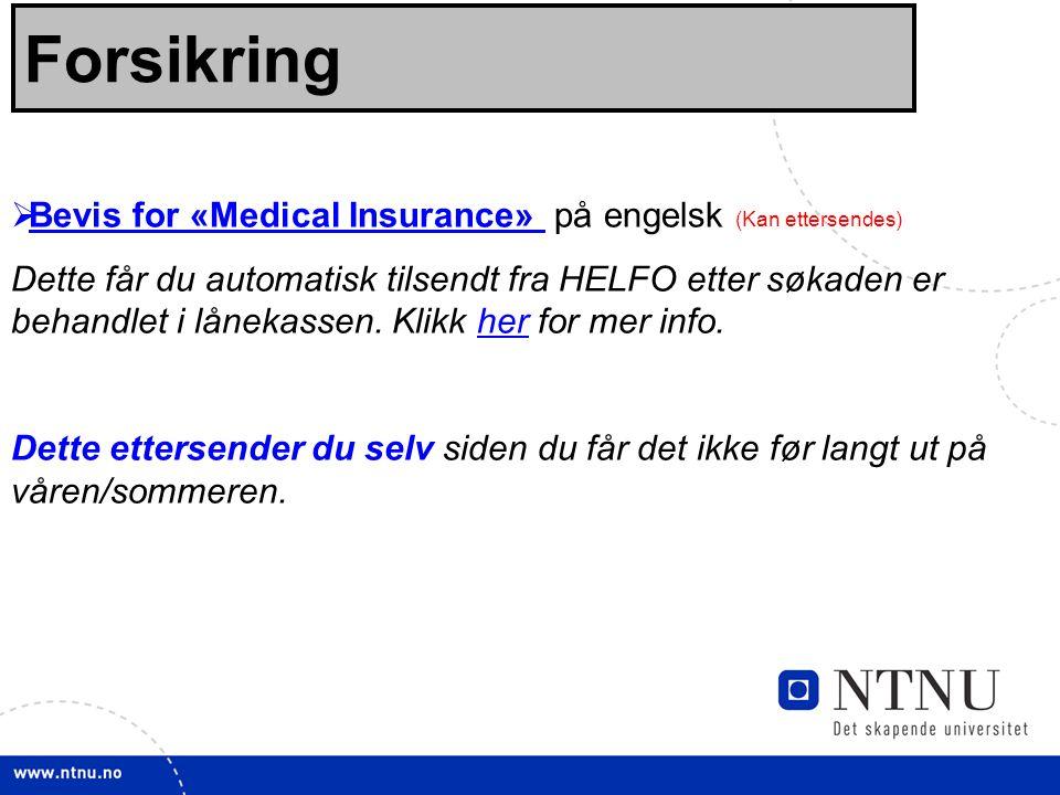 26 Forsikring  Bevis for «Medical Insurance» på engelsk (Kan ettersendes) Bevis for «Medical Insurance» Dette får du automatisk tilsendt fra HELFO etter søkaden er behandlet i lånekassen.