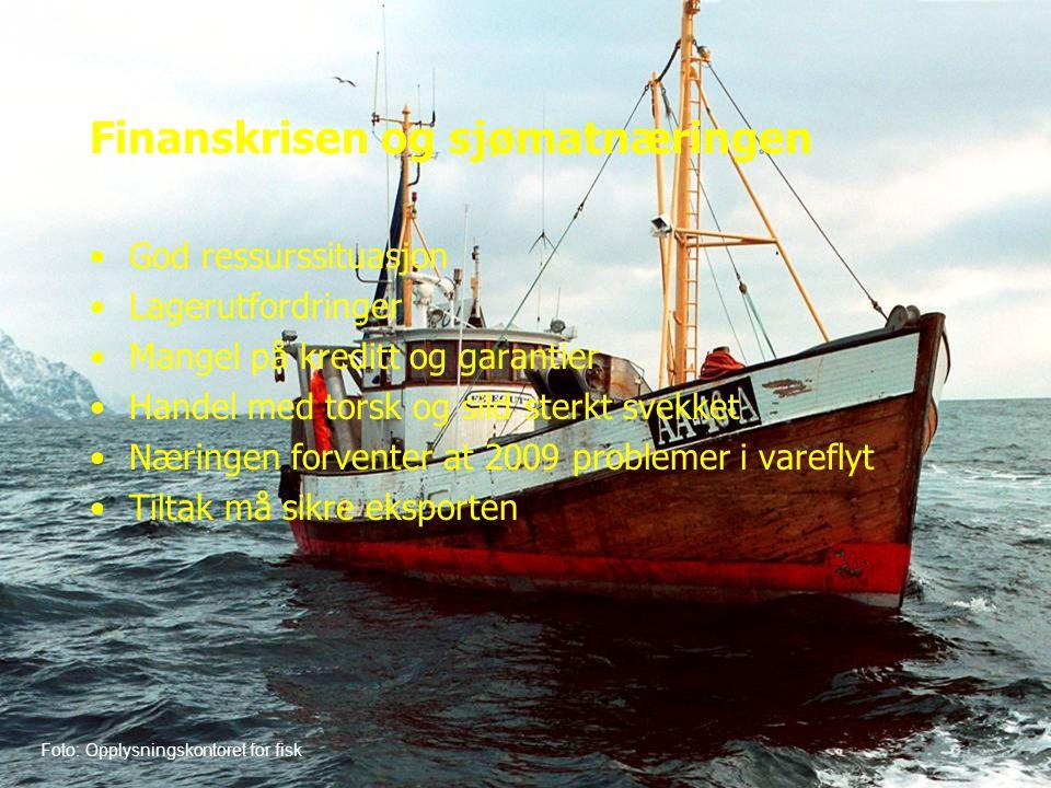 Finanskrisen og sjømatnæringen •God ressurssituasjon •Lagerutfordringer •Mangel på kreditt og garantier •Handel med torsk og sild sterkt svekket •Næringen forventer at 2009 problemer i vareflyt •Tiltak må sikre eksporten Foto: Opplysningskontoret for fisk