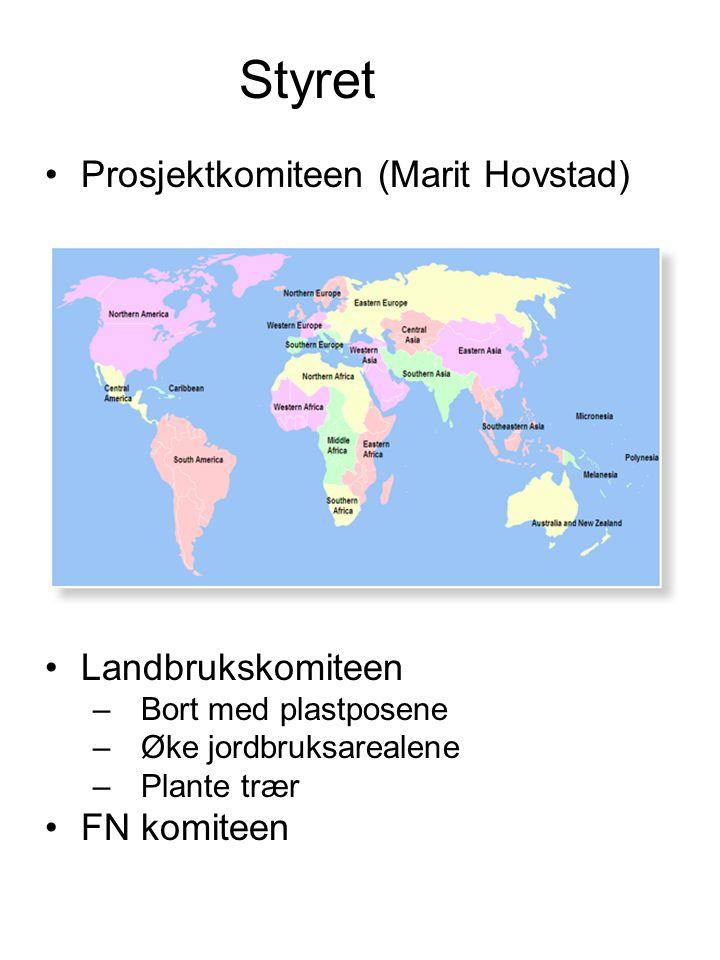 Styret •Prosjektkomiteen (Marit Hovstad) •Landbrukskomiteen –Bort med plastposene –Øke jordbruksarealene –Plante trær •FN komiteen