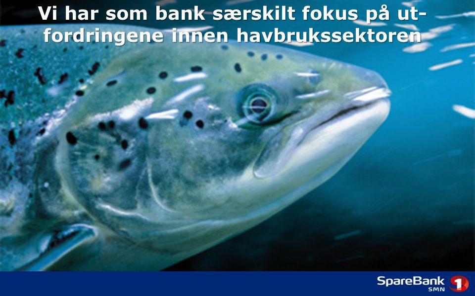 Vi har som bank særskilt fokus på ut- fordringene innen havbrukssektoren
