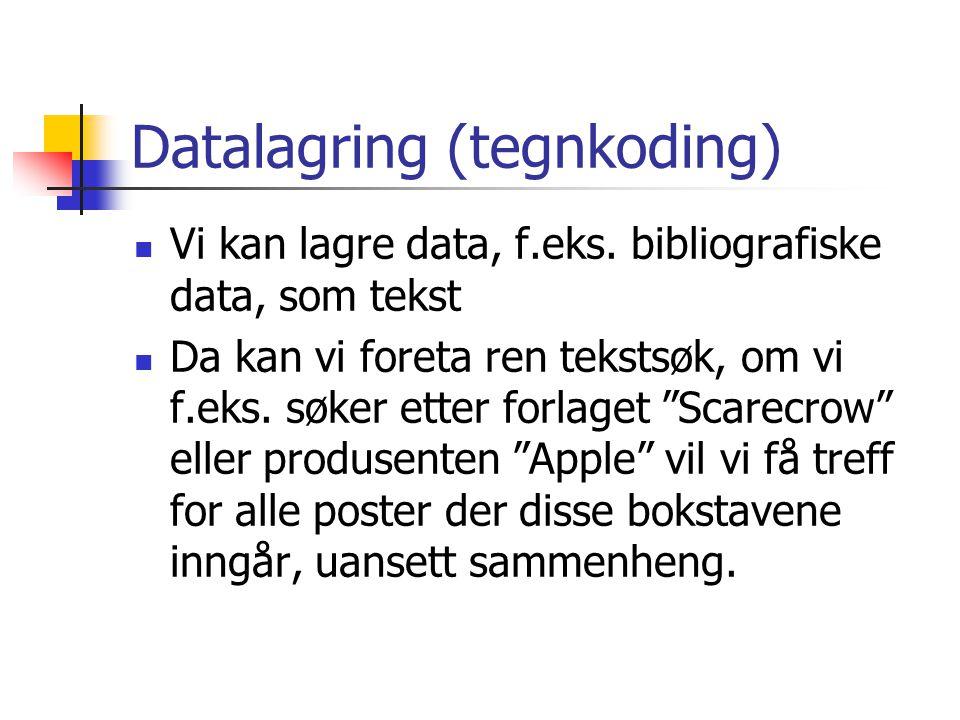Datalagring (tegnkoding)  Vi kan lagre data, f.eks. bibliografiske data, som tekst  Da kan vi foreta ren tekstsøk, om vi f.eks. søker etter forlaget