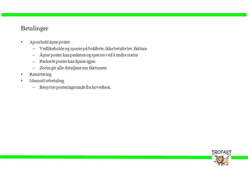 Betalinger •Ajourhold åpne poster –Vedlikeholde og spørre på bokførte, ikke betalte lev.faktura –Åpne poster kan parkeres og sperres ved å endre statu