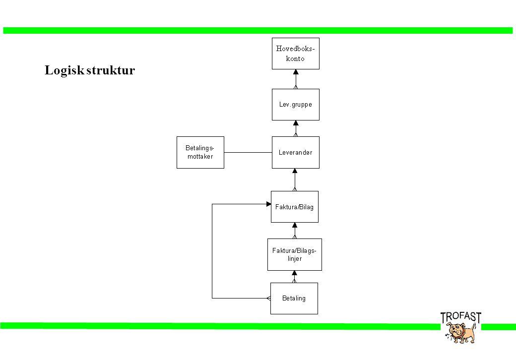 Logisk struktur