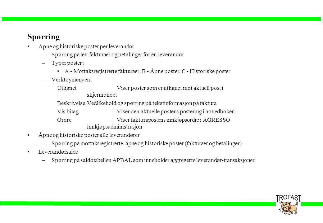 Spørring •Åpne og historiske poster per leverandør –Spørring på lev.fakturaer og betalinger for en leverandør –Typer poster : •A - Mottaksregistrerte