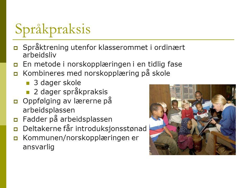 Språkpraksis  Språktrening utenfor klasserommet i ordinært arbeidsliv  En metode i norskopplæringen i en tidlig fase  Kombineres med norskopplæring