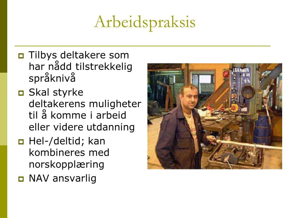 Arbeidspraksis  Tilbys deltakere som har nådd tilstrekkelig språknivå  Skal styrke deltakerens muligheter til å komme i arbeid eller videre utdannin