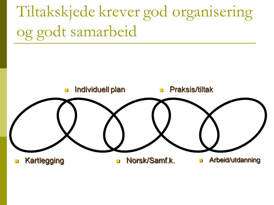 Tiltakskjede krever god organisering og godt samarbeid  Kartlegging  Individuell plan  Norsk/Samf.k.  Praksis/tiltak  Arbeid/utdanning