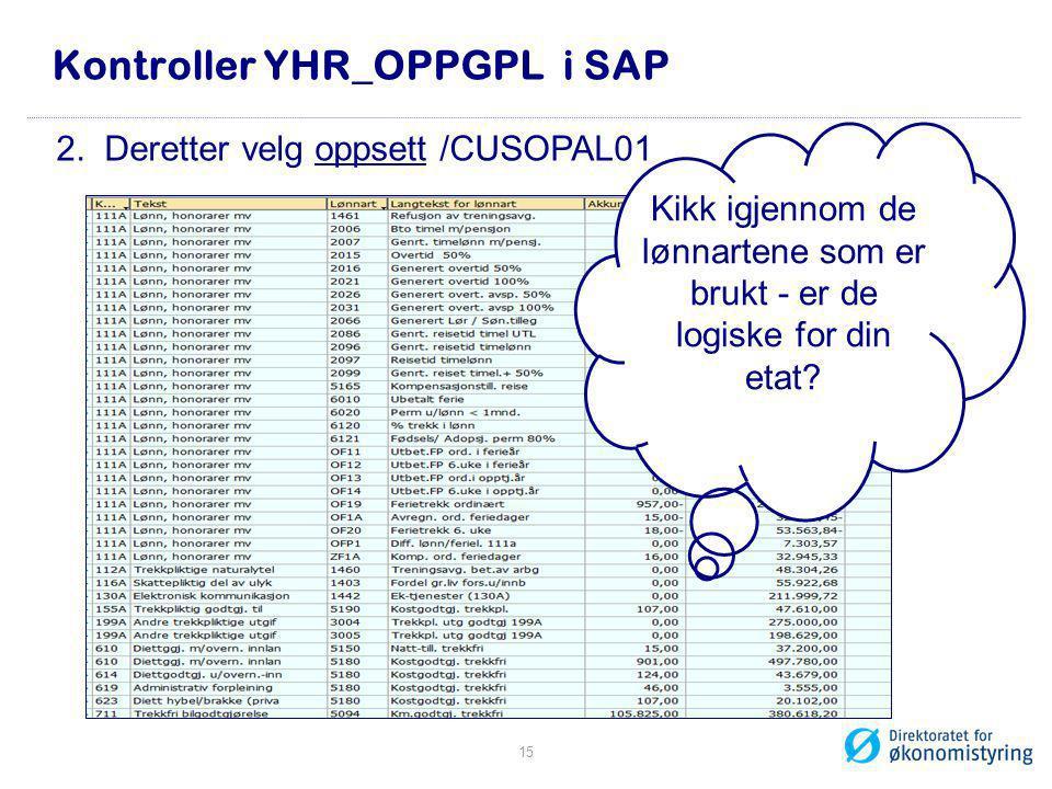 Kontroller YHR_OPPGPL i SAP Kikk igjennom de lønnartene som er brukt - er de logiske for din etat? 2. Deretter velg oppsett /CUSOPAL01 15