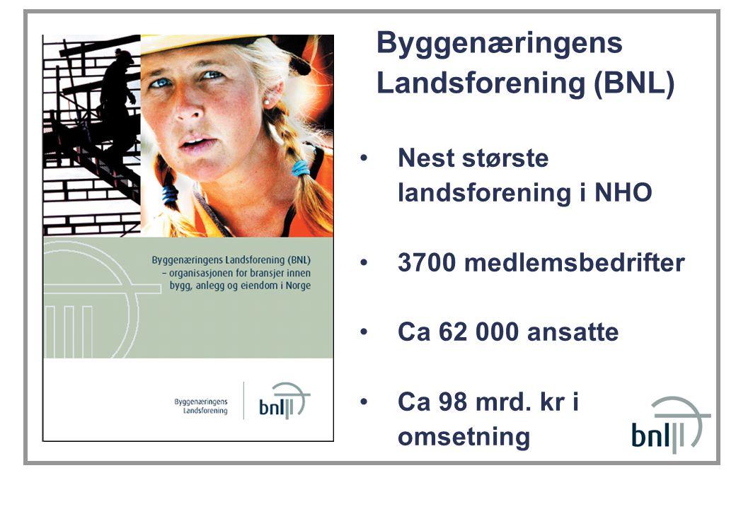 •Nest største landsforening i NHO •3700 medlemsbedrifter •Ca 62 000 ansatte •Ca 98 mrd.