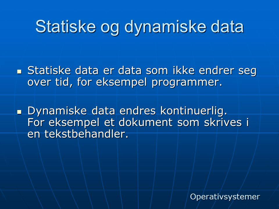Statiske og dynamiske data  Statiske data er data som ikke endrer seg over tid, for eksempel programmer.  Dynamiske data endres kontinuerlig. For ek