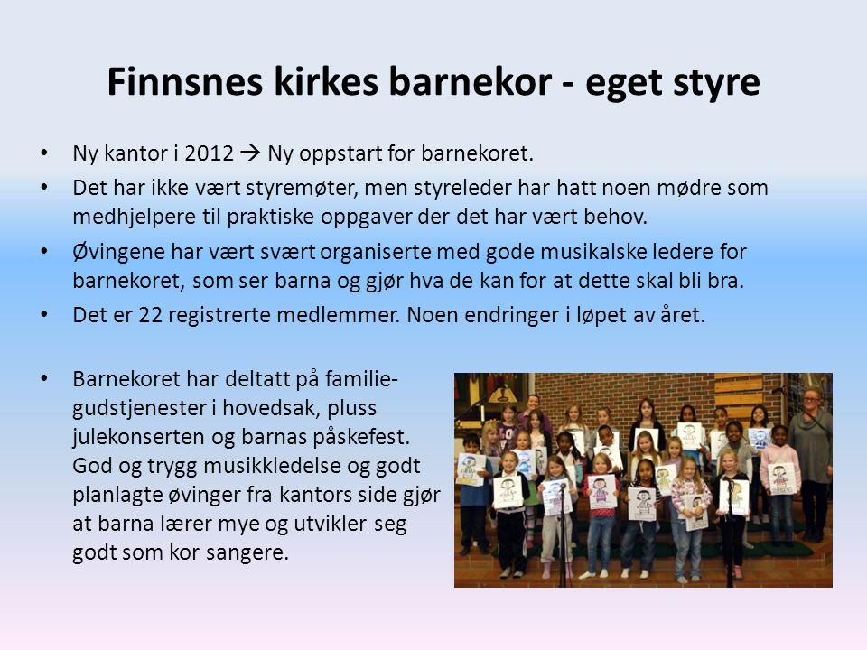 Finnsnes kirkes barnekor - eget styre • Ny kantor i 2012  Ny oppstart for barnekoret. • Det har ikke vært styremøter, men styreleder har hatt noen mø