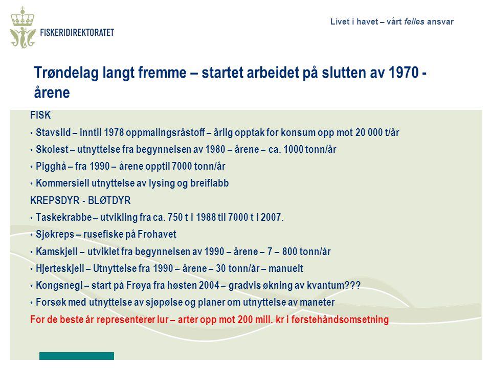 Livet i havet – vårt felles ansvar Trøndelag langt fremme – startet arbeidet på slutten av 1970 - årene FISK • Stavsild – inntil 1978 oppmalingsråstoff – årlig opptak for konsum opp mot 20 000 t/år • Skolest – utnyttelse fra begynnelsen av 1980 – årene – ca.