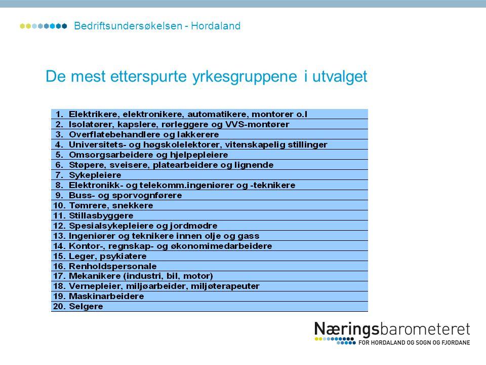 De mest etterspurte yrkesgruppene i utvalget Bedriftsundersøkelsen - Hordaland