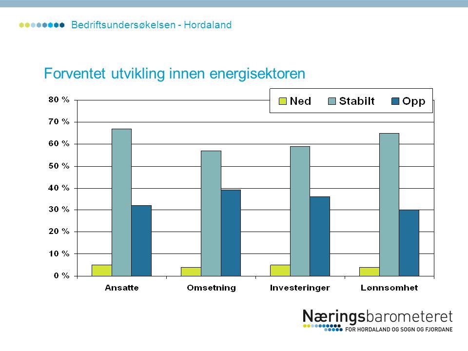 Forventet utvikling innen energisektoren Bedriftsundersøkelsen - Hordaland