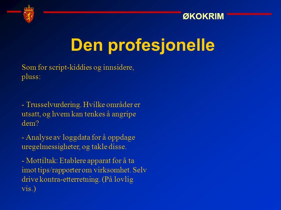 ØKOKRIM Den profesjonelle Som for script-kiddies og innsidere, pluss: - Trusselvurdering. Hvilke områder er utsatt, og hvem kan tenkes å angripe dem?