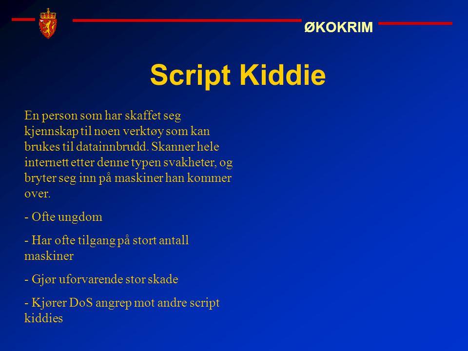 ØKOKRIM Script Kiddie En person som har skaffet seg kjennskap til noen verktøy som kan brukes til datainnbrudd. Skanner hele internett etter denne typ