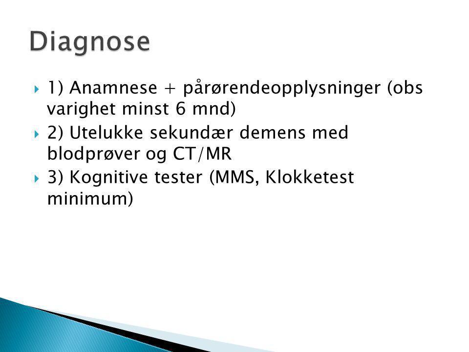  1) Anamnese + pårørendeopplysninger (obs varighet minst 6 mnd)  2) Utelukke sekundær demens med blodprøver og CT/MR  3) Kognitive tester (MMS, Klokketest minimum)