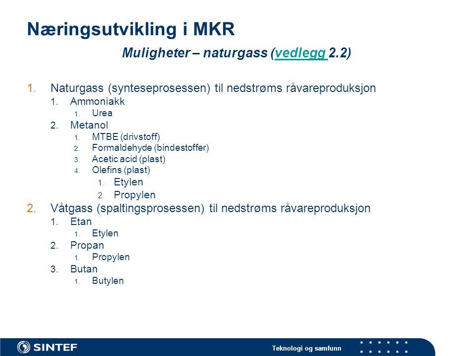 Teknologi og samfunn Næringsutvikling i MKR Muligheter – naturgass (vedlegg 2.3)vedlegg 3.LNG 1.