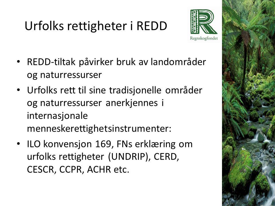 Urfolks rettigheter i REDD • REDD-tiltak påvirker bruk av landområder og naturressurser • Urfolks rett til sine tradisjonelle områder og naturressurse