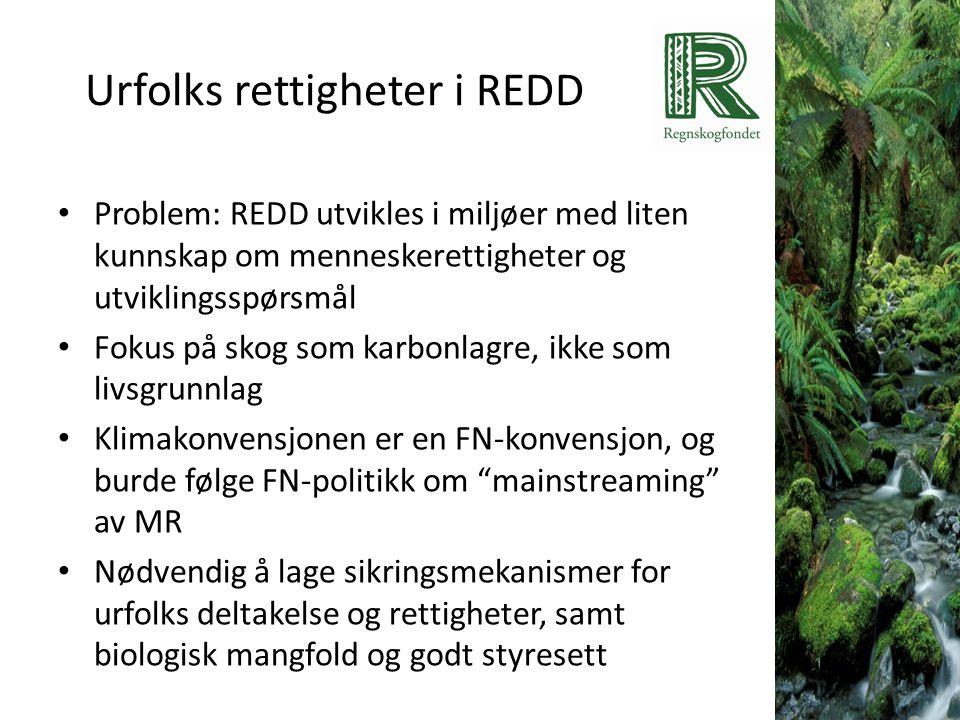 Urfolks rettigheter i REDD • Problem: REDD utvikles i miljøer med liten kunnskap om menneskerettigheter og utviklingsspørsmål • Fokus på skog som karb