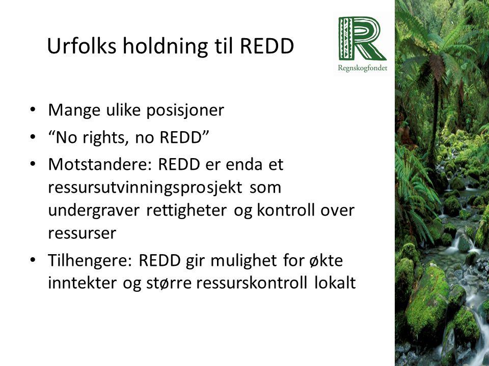 """Urfolks holdning til REDD • Mange ulike posisjoner • """"No rights, no REDD"""" • Motstandere: REDD er enda et ressursutvinningsprosjekt som undergraver ret"""