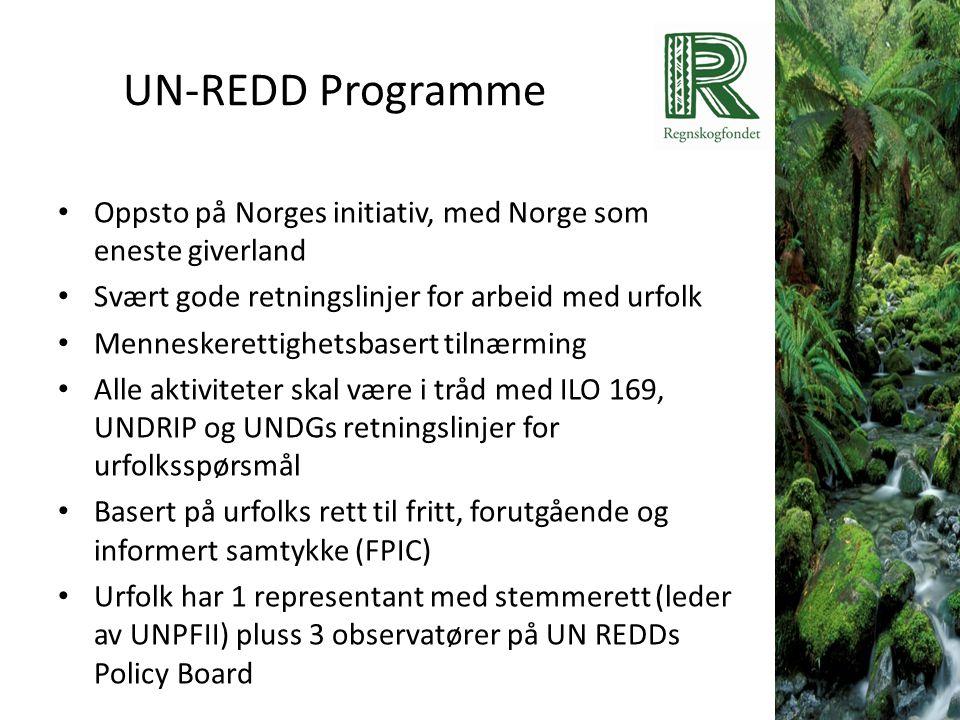 UN-REDD Programme • Oppsto på Norges initiativ, med Norge som eneste giverland • Svært gode retningslinjer for arbeid med urfolk • Menneskerettighetsb