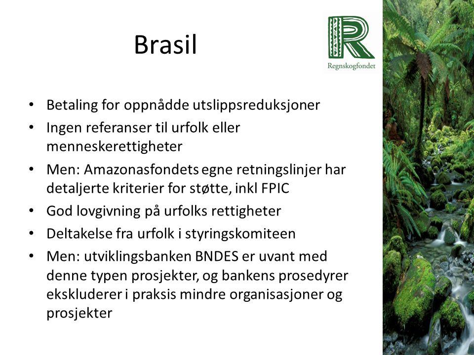 Brasil • Betaling for oppnådde utslippsreduksjoner • Ingen referanser til urfolk eller menneskerettigheter • Men: Amazonasfondets egne retningslinjer