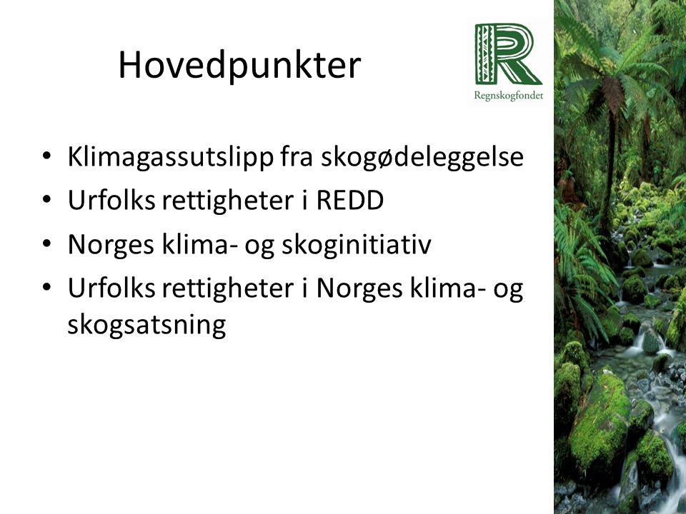 Hovedpunkter • Klimagassutslipp fra skogødeleggelse • Urfolks rettigheter i REDD • Norges klima- og skoginitiativ • Urfolks rettigheter i Norges klima