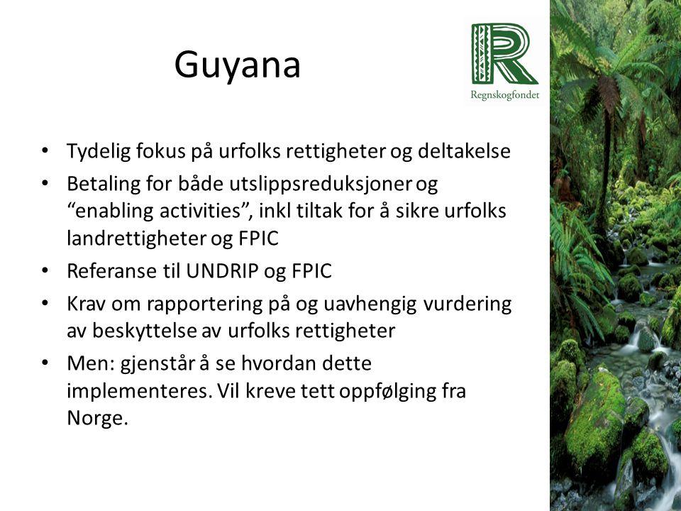 """Guyana • Tydelig fokus på urfolks rettigheter og deltakelse • Betaling for både utslippsreduksjoner og """"enabling activities"""", inkl tiltak for å sikre"""