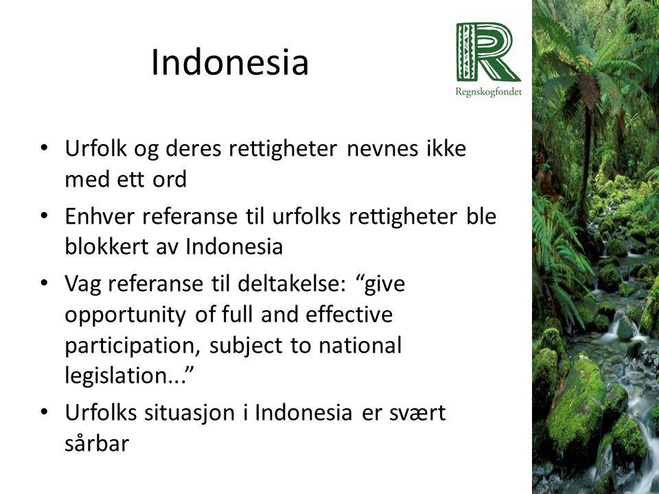 Indonesia • Urfolk og deres rettigheter nevnes ikke med ett ord • Enhver referanse til urfolks rettigheter ble blokkert av Indonesia • Vag referanse t