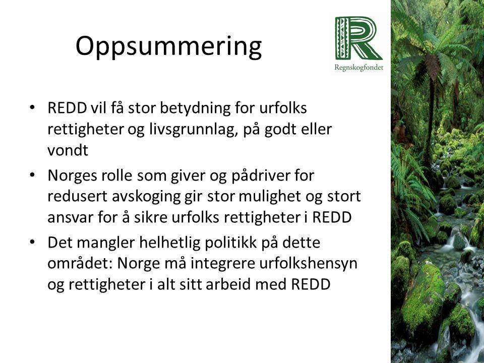 Oppsummering • REDD vil få stor betydning for urfolks rettigheter og livsgrunnlag, på godt eller vondt • Norges rolle som giver og pådriver for reduse