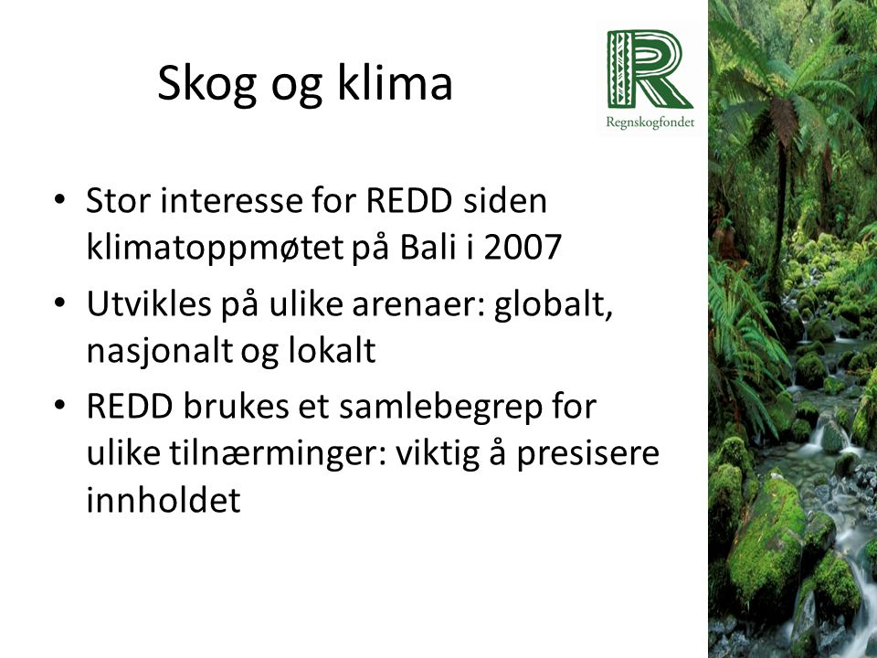 Skog og klima • Stor interesse for REDD siden klimatoppmøtet på Bali i 2007 • Utvikles på ulike arenaer: globalt, nasjonalt og lokalt • REDD brukes et