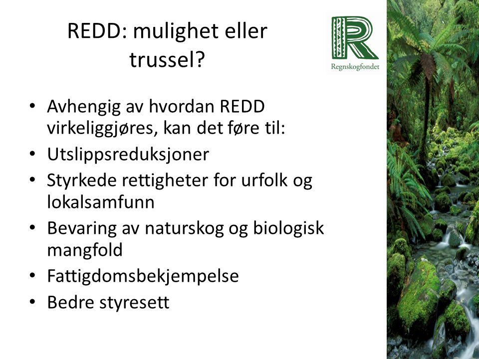 REDD: mulighet eller trussel? • Avhengig av hvordan REDD virkeliggjøres, kan det føre til: • Utslippsreduksjoner • Styrkede rettigheter for urfolk og