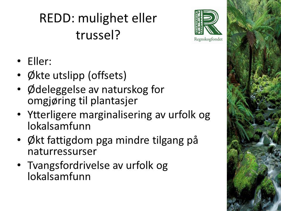 REDD: mulighet eller trussel? • Eller: • Økte utslipp (offsets) • Ødeleggelse av naturskog for omgjøring til plantasjer • Ytterligere marginalisering