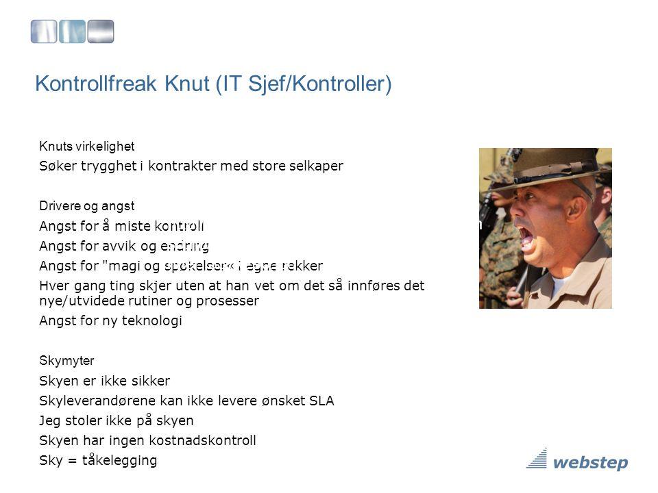 Kontrollfreak Knut (IT Sjef/Kontroller) Knuts virkelighet Søker trygghet i kontrakter med store selkaper Drivere og angst Angst for å miste kontroll A