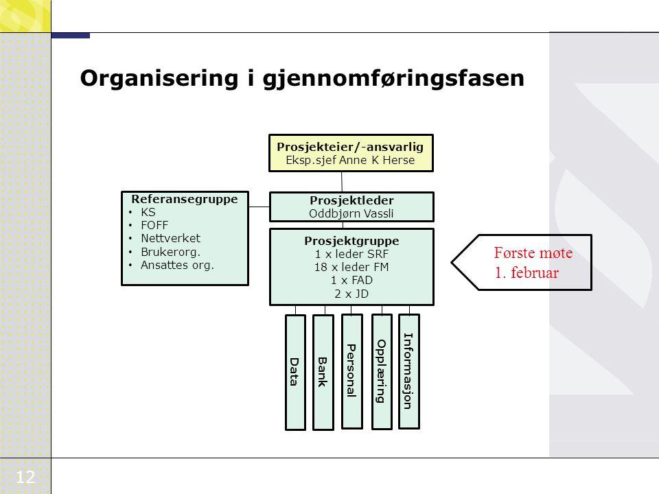 12 Organisering i gjennomføringsfasen Prosjekteier/-ansvarlig Eksp.sjef Anne K Herse Prosjektleder Oddbjørn Vassli Referansegruppe • KS • FOFF • Nettv