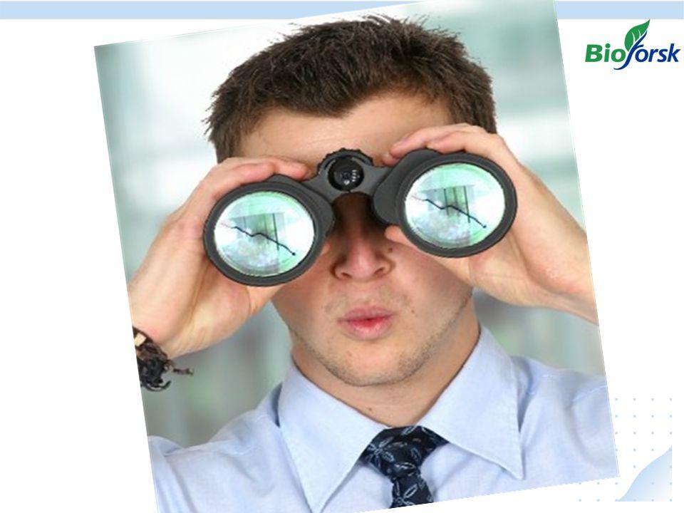 natural curiosity observation qualitative information