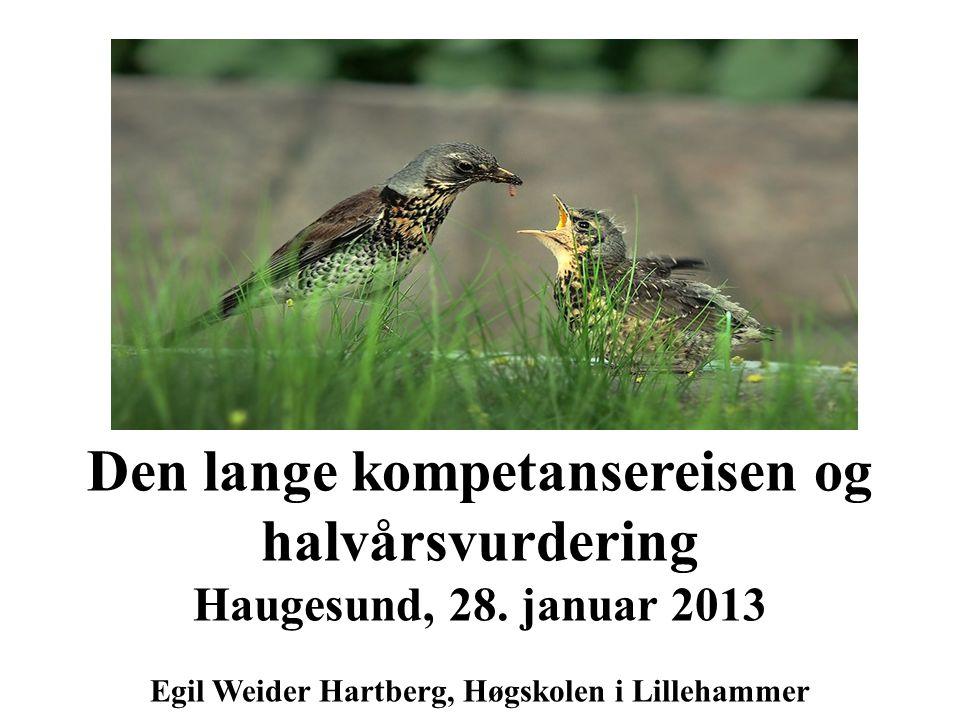 Den lange kompetansereisen og halvårsvurdering Haugesund, 28. januar 2013 Egil Weider Hartberg, Høgskolen i Lillehammer