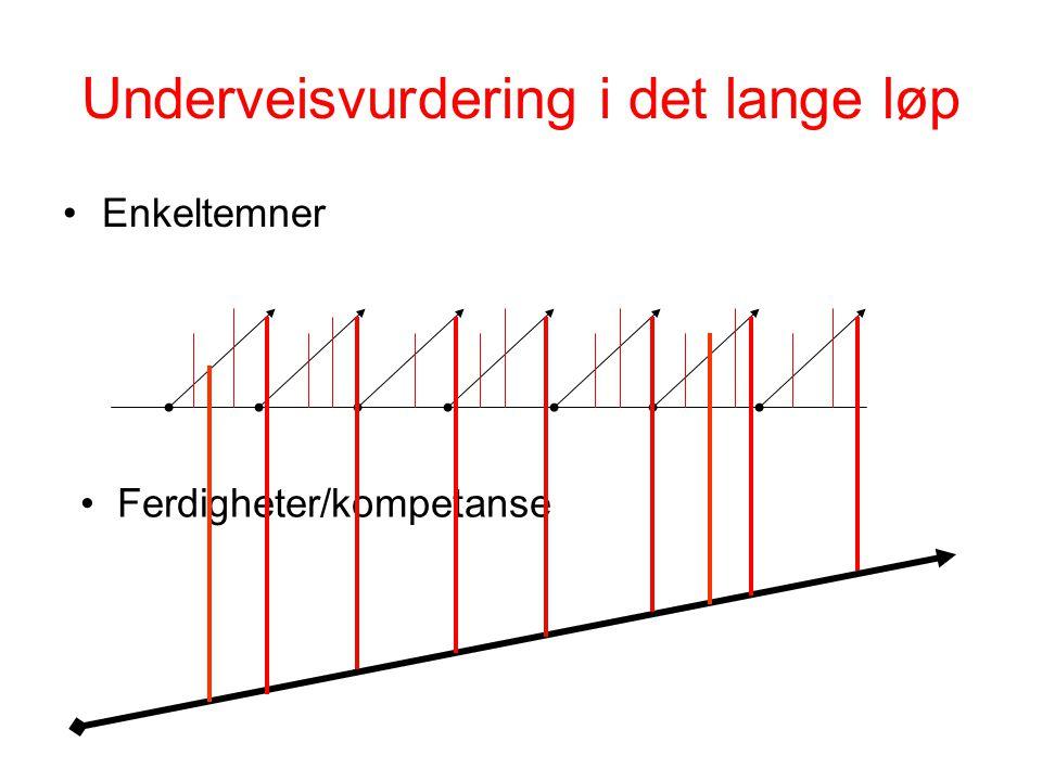 Underveisvurdering i det lange løp •Enkeltemner • Ferdigheter/kompetanse